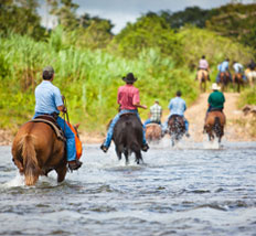 'Stann Creek - Belize' from the web at 'http://www.belizenet.com/images/stann_creek_image.jpg'